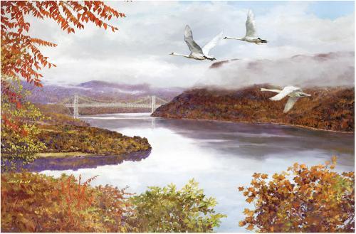 Mute Swans over Bear Mountain Bridge